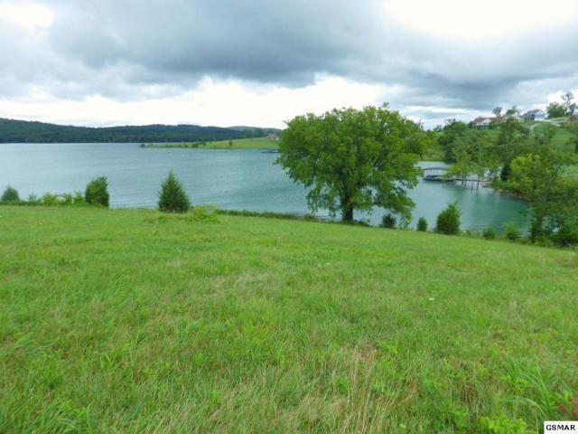 Lot 435 Shainas Place, Sharps Chapel, TN 37866 (#218979) :: Prime Mountain Properties