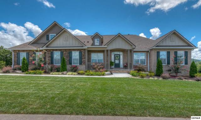 1432 Park Place Ave, Sevierville, TN 37862 (#218995) :: Billy Houston Group