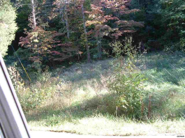 Lot 17 Riceland Drive Victoria Fields, Sevierville, TN 37862 (#219020) :: Billy Houston Group
