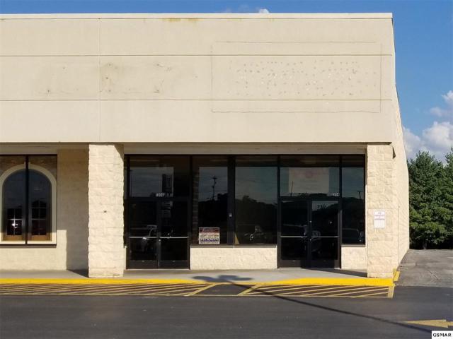 1204 State Street, White Pine, TN 37890 (#219031) :: The Terrell Team