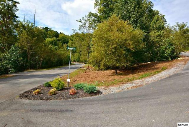 Lot 122 Summit Trails Drive, Sevierville, TN 37876 (#219045) :: Billy Houston Group