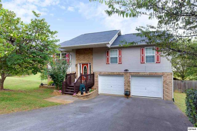 1441 Jasmine Trail, Sevierville, TN 37862 (#219052) :: Colonial Real Estate
