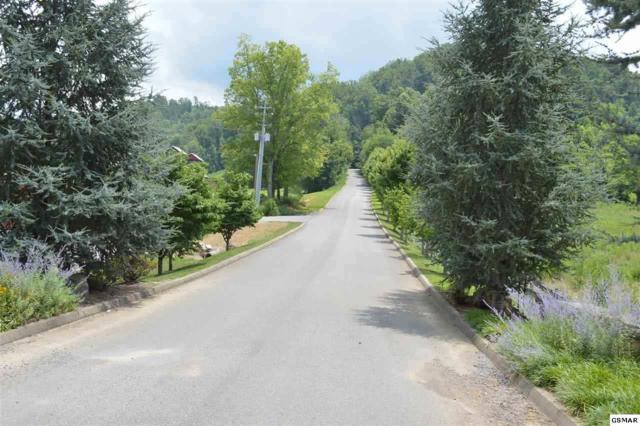 Wilderness Mountain Rd, Wears Valley, TN 37862 (#219055) :: The Terrell Team