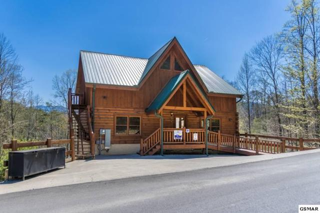 4319 Forest Ridge Way Jump'n Inn, Pigeon Forge, TN 37863 (#219058) :: Billy Houston Group