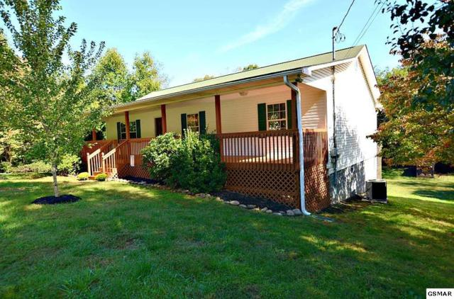 2290 Arch Rock Drive, Sevierville, TN 37876 (#219077) :: Colonial Real Estate