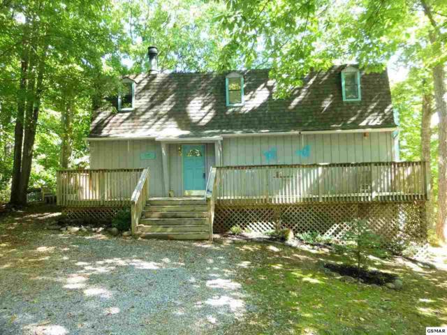 904 Echo Place, Gatlinburg, TN 37738 (#219081) :: Billy Houston Group