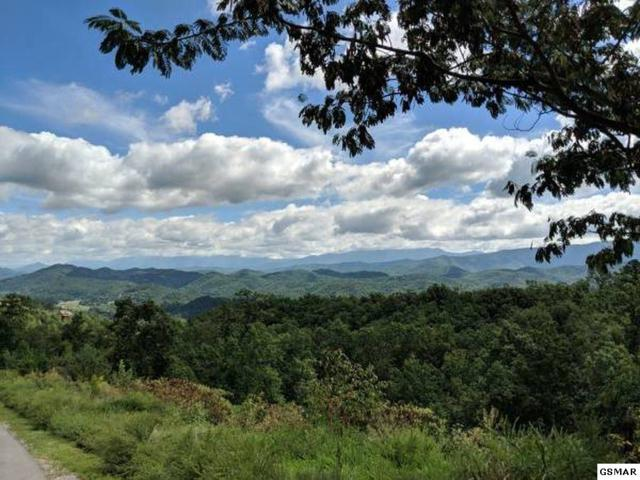 3240 Laurel Cove Trail Lot #104 The Su, Sevierville, TN 37862 (#219084) :: Billy Houston Group