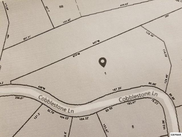 Lot 1 Cobblestone Lane, Dandridge, TN 37725 (#219089) :: Colonial Real Estate