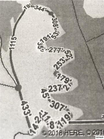 Lake Smoky Road Douglas Lake, Dandridge, TN 37725 (#219094) :: Colonial Real Estate