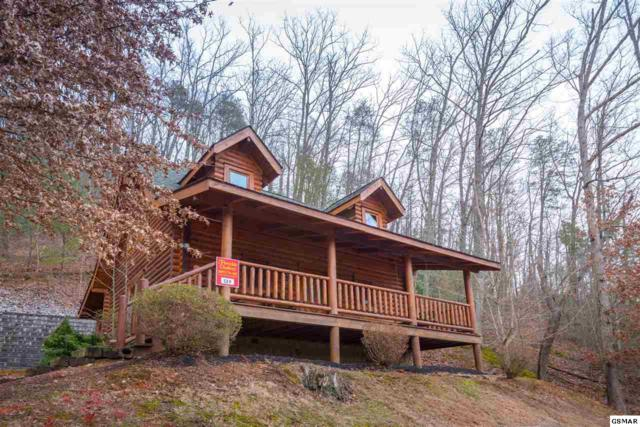 3225 Smoky Ridge Way, Sevierville, TN 37862 (#219103) :: Colonial Real Estate