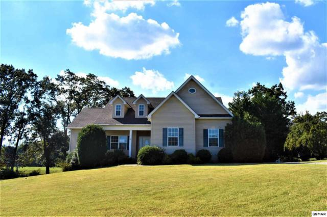 2065 Strawberry Dr., New Market, TN 37820 (#219105) :: Colonial Real Estate