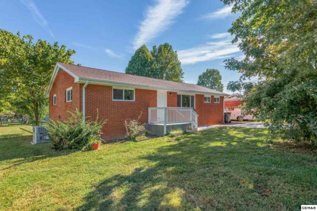 3211 Old Mill Street, Pigeon Forge, TN 37863 (#219114) :: The Terrell Team