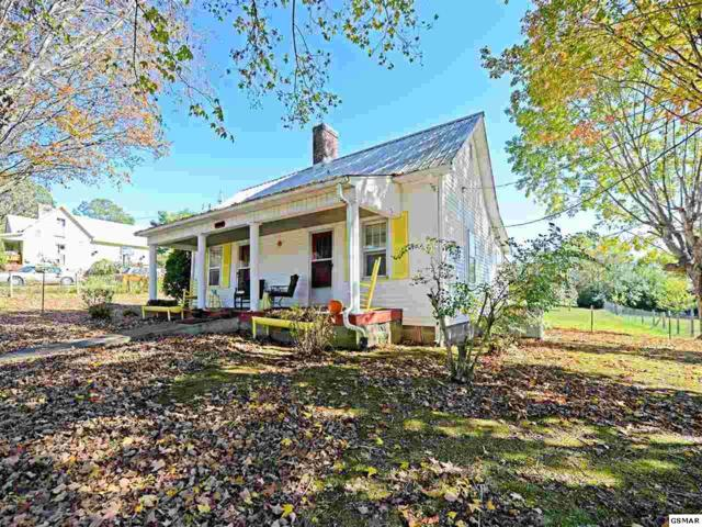 1938 Main St, White Pine, TN 37890 (#219115) :: The Terrell Team