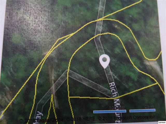 Lot 40 Rich Mountain Way, Sevierville, TN 37876 (#219124) :: Prime Mountain Properties