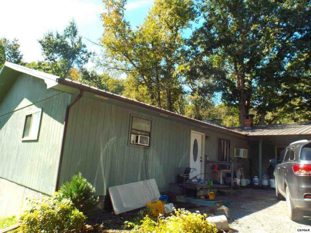 903 & 909 Trotter Way, Pigeon Forge, TN 37863 (#219133) :: Colonial Real Estate