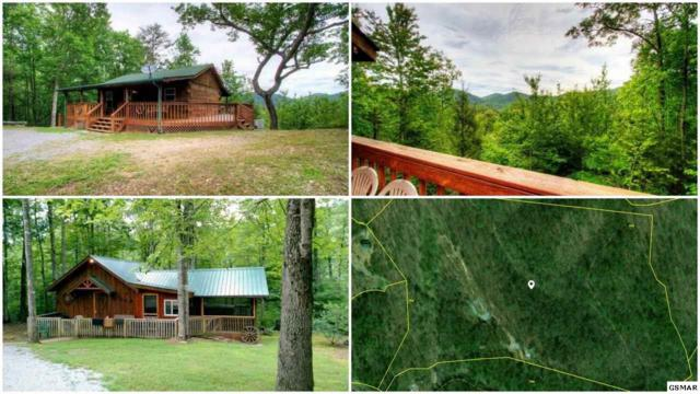 4380 Creek Falls Way, Sevierville, TN 37862 (#219144) :: Four Seasons Realty, Inc
