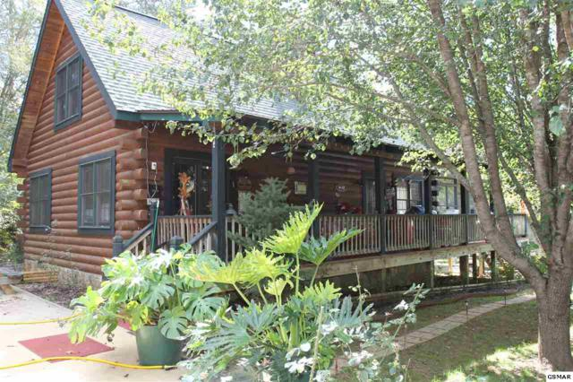 2216 French Broad River Rd, Seymour, TN 37865 (#219167) :: Prime Mountain Properties