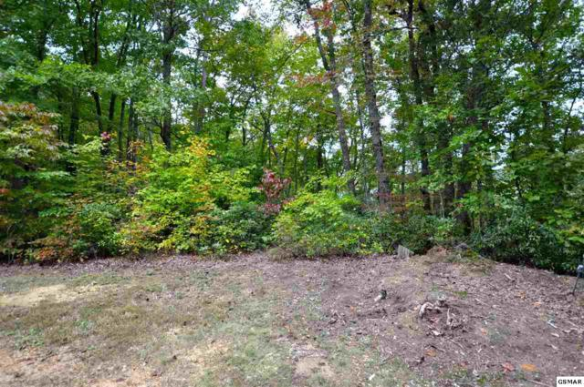 Little Round Top Ln Lot 12, Townsend, TN 37882 (#219215) :: Billy Houston Group