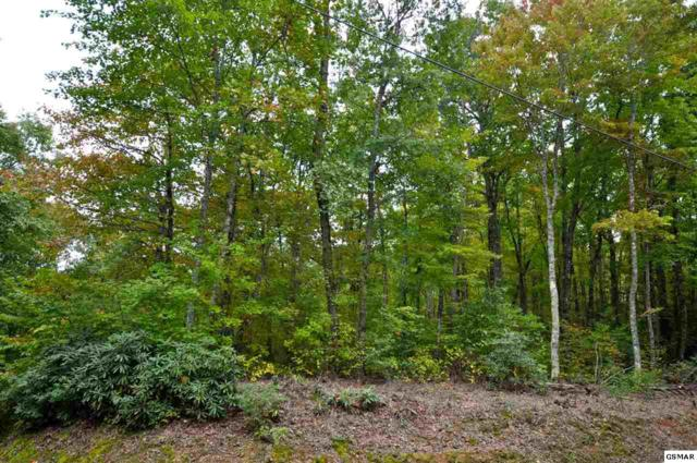Little Round Top Ln Lot 13, Townsend, TN 37882 (#219219) :: Billy Houston Group