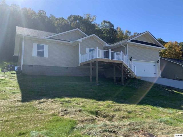 Lot 4, 158 Clear Creek Rd., Kodak, TN 37764 (#219243) :: Billy Houston Group