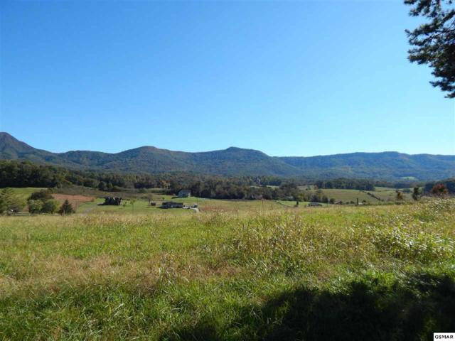 Tract 5 Stiles Rd., Sevierville, TN 37876 (#219250) :: Colonial Real Estate