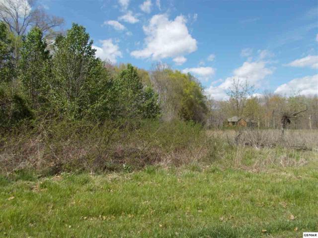 PARCEL 037 Mccorkle Road, White Pine, TN 37890 (#219253) :: Colonial Real Estate