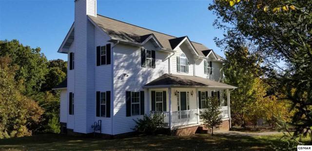3054 Sugarwood Dr, Kodak, TN 37764 (#219255) :: Colonial Real Estate
