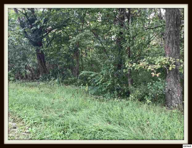Lot 44 Progress Hill Blvd, Pigeon Forge, TN 37863 (#219257) :: Billy Houston Group