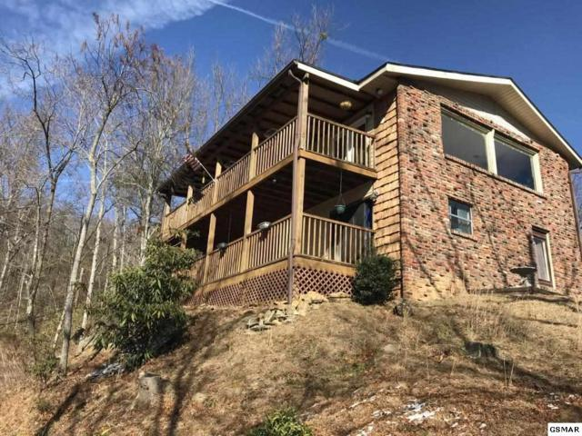 711 Sunshine Trl, Gatlinburg, TN 37738 (#219276) :: Colonial Real Estate