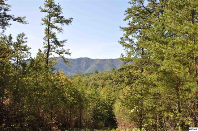 Stonegate Way Lot 65, Townsend, TN 37882 (#219283) :: Colonial Real Estate