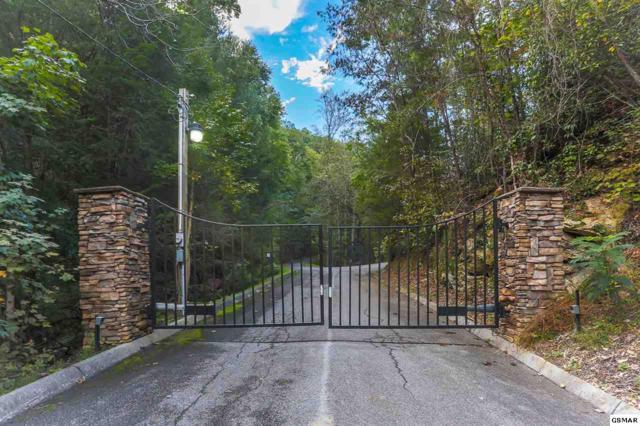 Lot 13 Fawn Hollow Trl, Townsend, TN 37882 (#219324) :: SMOKY's Real Estate LLC