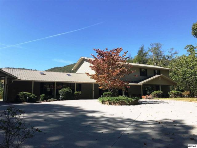 639 Jefferson Road, Gatlinburg, TN 37738 (#219339) :: Billy Houston Group