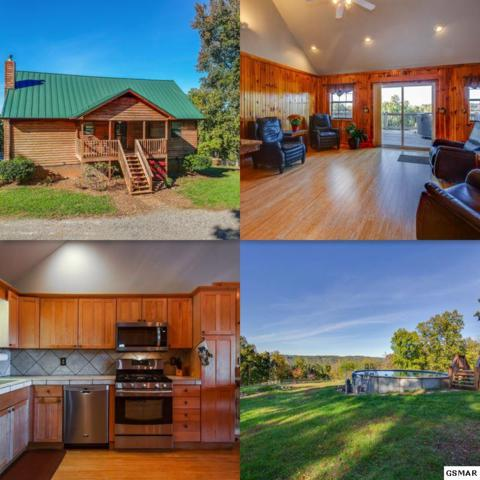 4631 Lone Mountain Rd, New Tazewell, TN 37825 (#219347) :: Colonial Real Estate