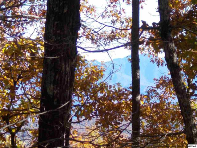 Lot 32 Mountain Blvd, Sevierville, TN 37876 (#219363) :: Colonial Real Estate