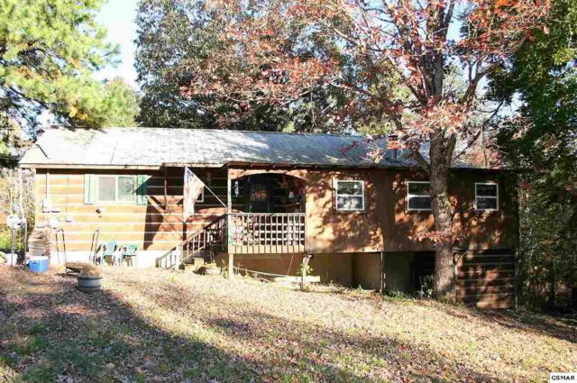 202 Great View Way, Newport, TN 37821 (#219364) :: SMOKY's Real Estate LLC