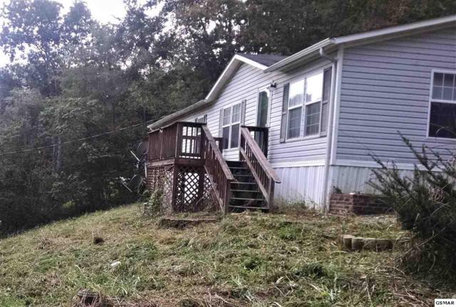 1101 Deer Trail Way, Seymour, TN 37865 (#219367) :: Colonial Real Estate