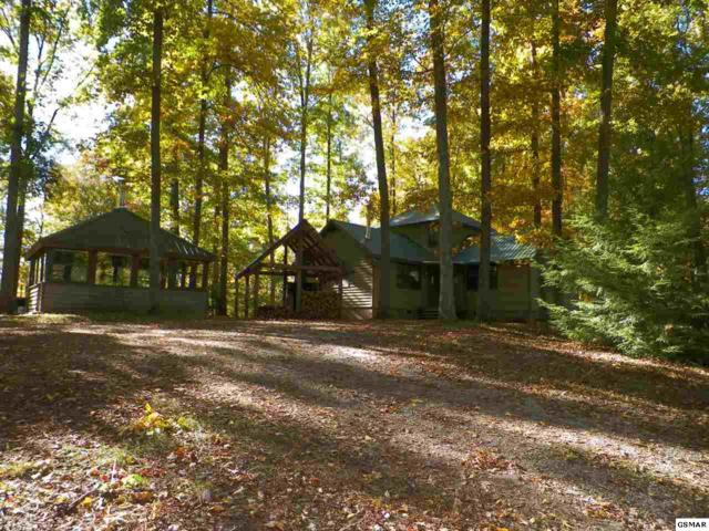 912 Jackson Hollow Rd, Thorn Hill, TN 37881 (#219379) :: Colonial Real Estate