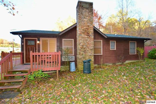 810 Glades Road, Gatlinburg, TN 37738 (#219385) :: Colonial Real Estate