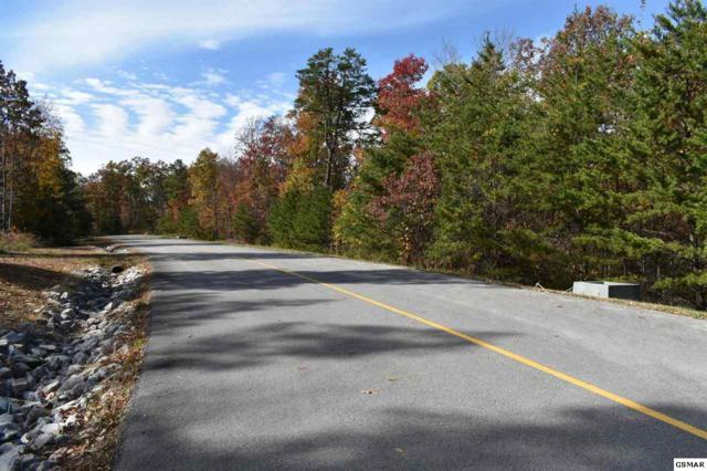 Tract 2 Long Rifle Rd, Walland, TN 37886 (#219397) :: Colonial Real Estate