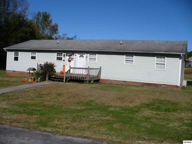 3146 Hammer Lane, Kodak, TN 37764 (#219401) :: Colonial Real Estate