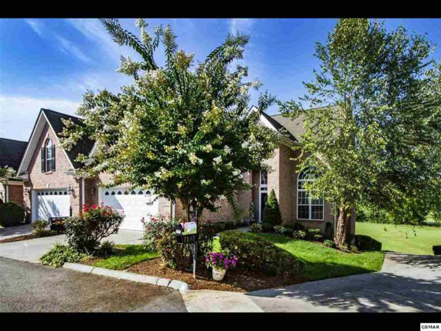 1141 Creekside Village Way, Seymour, TN 37865 (#219406) :: Colonial Real Estate
