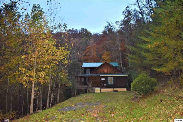 4613 Wesley Way, Sevierville, TN 37876 (#219413) :: The Terrell Team