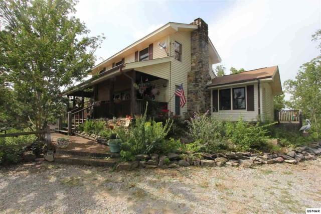 1131 Lindsey Dr, Sevierville, TN 37876 (#219415) :: Colonial Real Estate