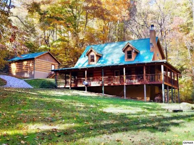 1053 Big Buck Trace, Townsend, TN 37882 (#219420) :: SMOKY's Real Estate LLC