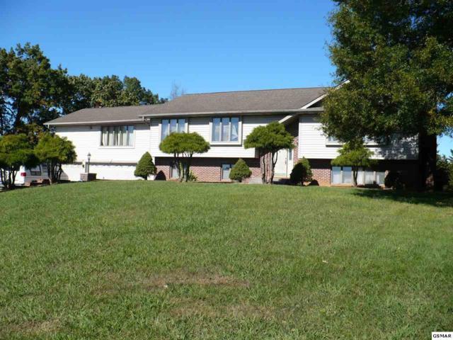 370 Grandview Drive, Kodak, TN 37764 (#219422) :: Billy Houston Group
