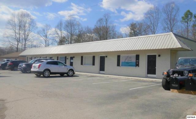 424 Maryville Hwy Unit 4, Seymour, TN 37865 (#219425) :: The Terrell Team