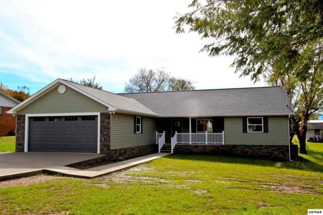 887 Overholt Rd, Newport, TN 37821 (#219426) :: SMOKY's Real Estate LLC
