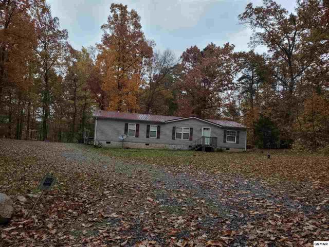 3410 Rex Thornton Rd, Dandridge, TN 37725 (#219428) :: Colonial Real Estate