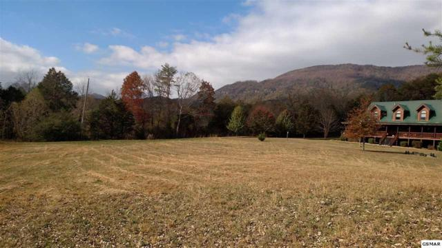 4.10 acres Mcgaha Chapel Rd, Cosby, TN 37722 (#219445) :: Billy Houston Group