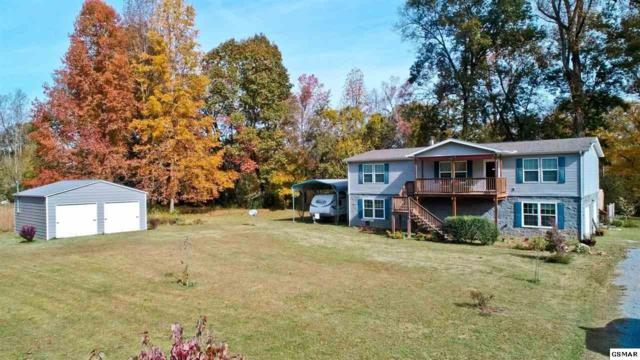 1483 River Chase Trl, Newport, TN 37821 (#219449) :: The Terrell Team